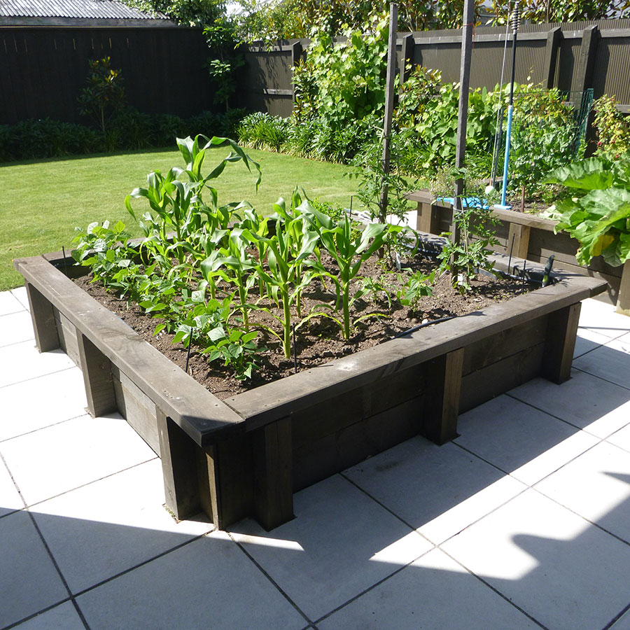Edible Gardens and Plantings